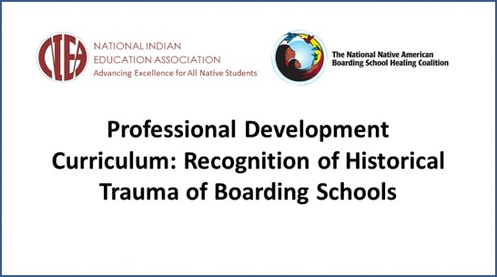 Professional Development Curriculum